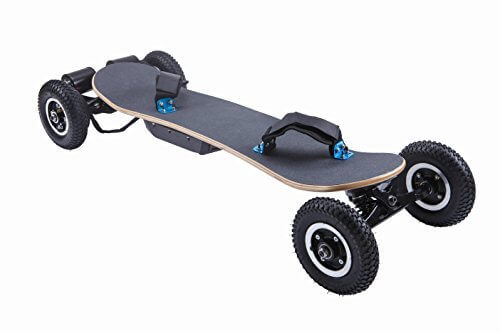 Ninestep Electric Mountainboard